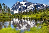 Picture Lake Evergreens Mount Shuksan Mount Baker Highway Snow Mountain Trees, Washington State Photographic Print by William Perry