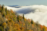 Autumn Colors and Mist at Sunrise, North Carolina Photographic Print by Adam Jones