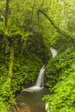 Central America, Costa Rica. Monteverde Waterfall. Rain Forest Photographic Print by Jaynes Gallery
