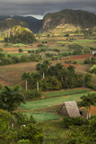 Cuba, Vinales. an Elevated View over the Valley and its Fields and Farms Photographic Print by Brenda Tharp