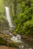 Central America, Costa Rica. Templo Waterfall in Rain Forest Photographic Print by Jaynes Gallery
