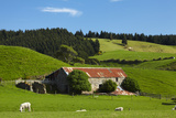 Old Stone Barn and Farmland, Near Taieri Mouth, Dunedin, Otago, South Island, New Zealand Photographic Print by David Wall