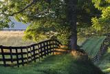 Farm Fence at Sunrise, Oldham County, Kentucky Photographic Print by Adam Jones