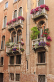 Flower Decorating Windows. Venice. Italy Photographic Print by Tom Norring