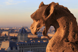 Looking Out over City, Paris, France from Roof, Notre Dame Cathedral with a Gargoyle in Foreground Reproduction photographique par Paul Dymond