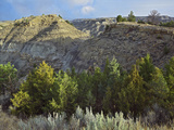 Makoshika State Park, Montana, Usa Photographic Print by Tim Fitzharris