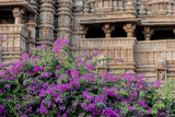 India, Madhya Pradesh State Temple of Kandariya with Bushes of Bougainvillea Flowers in Foreground Photographic Print by Ellen Clark