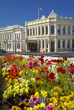 Flowers and Historic Buildings, Oamaru, North Otago, South Island, New Zealand Photographic Print by David Wall
