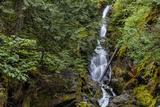 Stewart Creek Falls Near Nelson, British Columbia, Canada Photographic Print by Chuck Haney