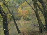 Autumn Along the Cassatot River, Arkansas, Usa Photographic Print by Tim Fitzharris