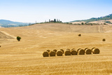 Countryside Near Gallina, Siena Province, Tuscany, Italy Photographic Print by Nico Tondini