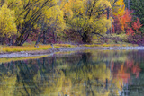 Autumn Colors Reflect into the Whitefish River in Whitefish, Montana, Usa Photographic Print by Chuck Haney