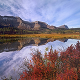 Sofa Mountain with Blueberry Bushes, Waterton Lakes National Park, Alberta Photographic Print by Tim Fitzharris