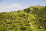 View over the Araratian Plain Towards Mount Ararat, Armenia Photographic Print by Michael Runkel