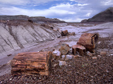 Petrified Logs at Blue Mesa, Petrified Forest National Park, Arizona, Usa Photographic Print by Tim Fitzharris