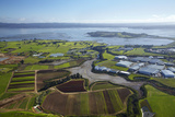 Crops, Oruarangi Creek, and Industrial Area, Mangere, Auckland, North Island, New Zealand Photographic Print by David Wall