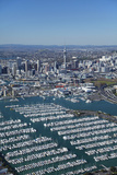 Westhaven Marina and Central Business District, Auckland, North Island, New Zealand Photographic Print by David Wall
