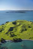 Volcanic Craters on Browns Island, or Motokorea, Hauraki Gulf, Auckland, North Island, New Zealand Photographic Print by David Wall