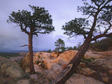 Storm over El Malpais National Monument, New Mexico, Usa Photographic Print by Tim Fitzharris