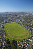 Avondale Racecourse, Auckland, North Island, New Zealand Photographic Print by David Wall