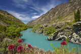 Spring Flowers and Kawarau River, Kararau Gorge, Central Otago, South Island, New Zealand Photographic Print by David Wall