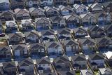 New Housing Development, Flat Bush, Auckland, North Island, New Zealand Photographic Print by David Wall