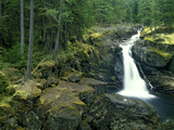 Washington State, Mt. Rainier National Park. Silver Falls Scenic Photographic Print by Jaynes Gallery