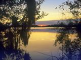 Sunset at Paurotis Pond, Everglades National Park, Florida, Usa Photographic Print by Tim Fitzharris
