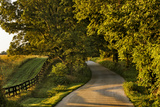 Rural Road and Fence at Sunrise, Oldham County, Kentucky Photographic Print by Adam Jones