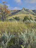 Dry Autumn in the South Unit, Theodore Roosevelt National Park, North Dakota Photographic Print by Tim Fitzharris