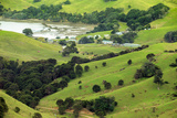 The Rolling Hills of the Coromandel Peninsula on the North Island of New Zealand Reproduction photographique par Paul Dymond