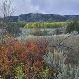 North Unit, Theodore Roosevelt National Park, North Dakota Photographic Print by Tim Fitzharris