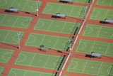 Netball Courts, Auckland Netball Center, Mount Wellington, Auckland, North Island, New Zealand Photographic Print by David Wall