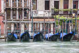 Gondola. Grand Canal. Venice, Italy Photographic Print by Tom Norring