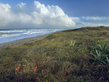 Storm Clouds at Apollo Beach, Canaveral National Seashore, Florida, Usa Photographic Print by Tim Fitzharris