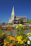 Flowers and St. Luke's Anglican Church, Oamaru, North Otago, South Island, New Zealand Photographic Print by David Wall