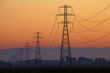 Row of Power Pylons at Sunset, Mid Canterbury, South Island, New Zealand Photographic Print by David Wall