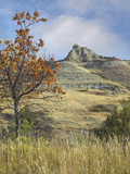 Fall Foliage in South Unit, Theodore Roosevelt National Park, North Dakota Photographic Print by Tim Fitzharris