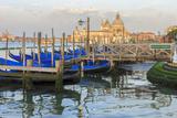 Gondola Lineup in Front of Basilica Di Santa Maria Della Salute. Venice. Italy Photographic Print by Tom Norring