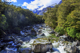 A Small Stream Near Milford Sound on the South Island of New Zealand Reproduction photographique par Paul Dymond
