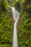 Costa Rica, Monteverde Cloud Forest Biological Reserve. La Paz Waterfall Scenic Photographic Print by Jaynes Gallery