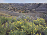 Landscape of the Little Missouri National Grassland, North Dakota Photographic Print by Tim Fitzharris