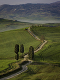 Cypress Trees and Winding Road to Villa Near Pienza, Tuscany, Italy Photographic Print by Brian Jannsen