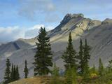 Peak at Sunwapta Pass, Icefields Parkway, Banff National Park, Alberta, Canada Photographic Print by Tim Fitzharris