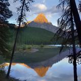 Mount Chephren at Waterfowl Lake, Banff National Park, Alberta Photographic Print by Tim Fitzharris