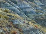 Hillside in the Badlands South Unit, Theodore Roosevelt National Park, North Dakota Photographic Print by Tim Fitzharris