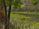 Wilton Landing at Millwood Lake, Arkansas, Usa Photographic Print by Tim Fitzharris