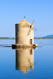 The Spanish Windmill on the Lagoon of Orbetello, Tuscany Photographic Print by Nico Tondini