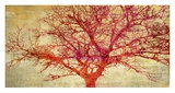 Coral Tree Print by Alessio Aprile