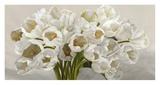 Tulipes blanches Poster by Leonardo Sanna
